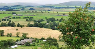 Farmland in the Scottish Southern Uplands near Peebles