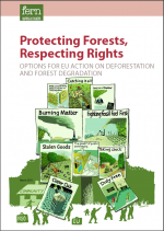 The Protecting forests, protecting rights report by FERN.