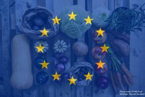 EU Flag on food background. Brexit.