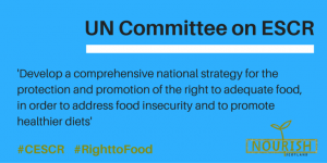UN Committee on Economic, Social and Cultural Rights
