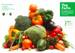 Veg Facts, A briefing by the Food Foundation that demonstrated the need for action to increase veg consumption