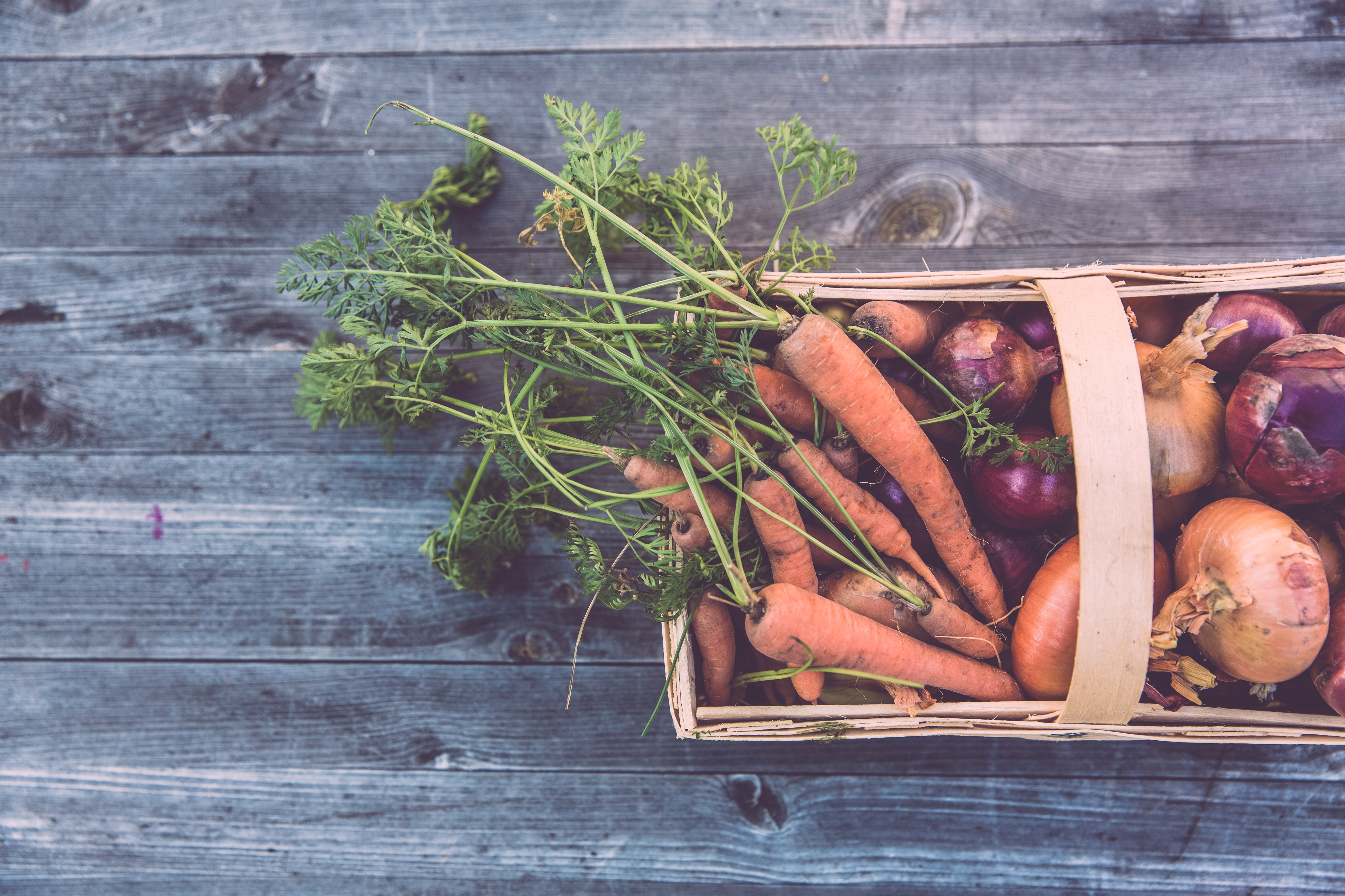 Making the food supply chain work for everyone