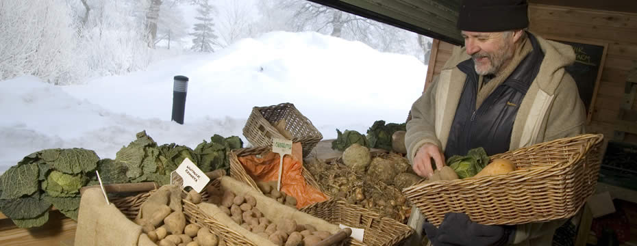 Vegetables being displayed in front of a snow covered farmyard