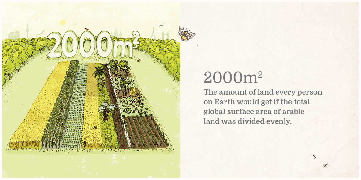What can you grow on 2000 square metres?