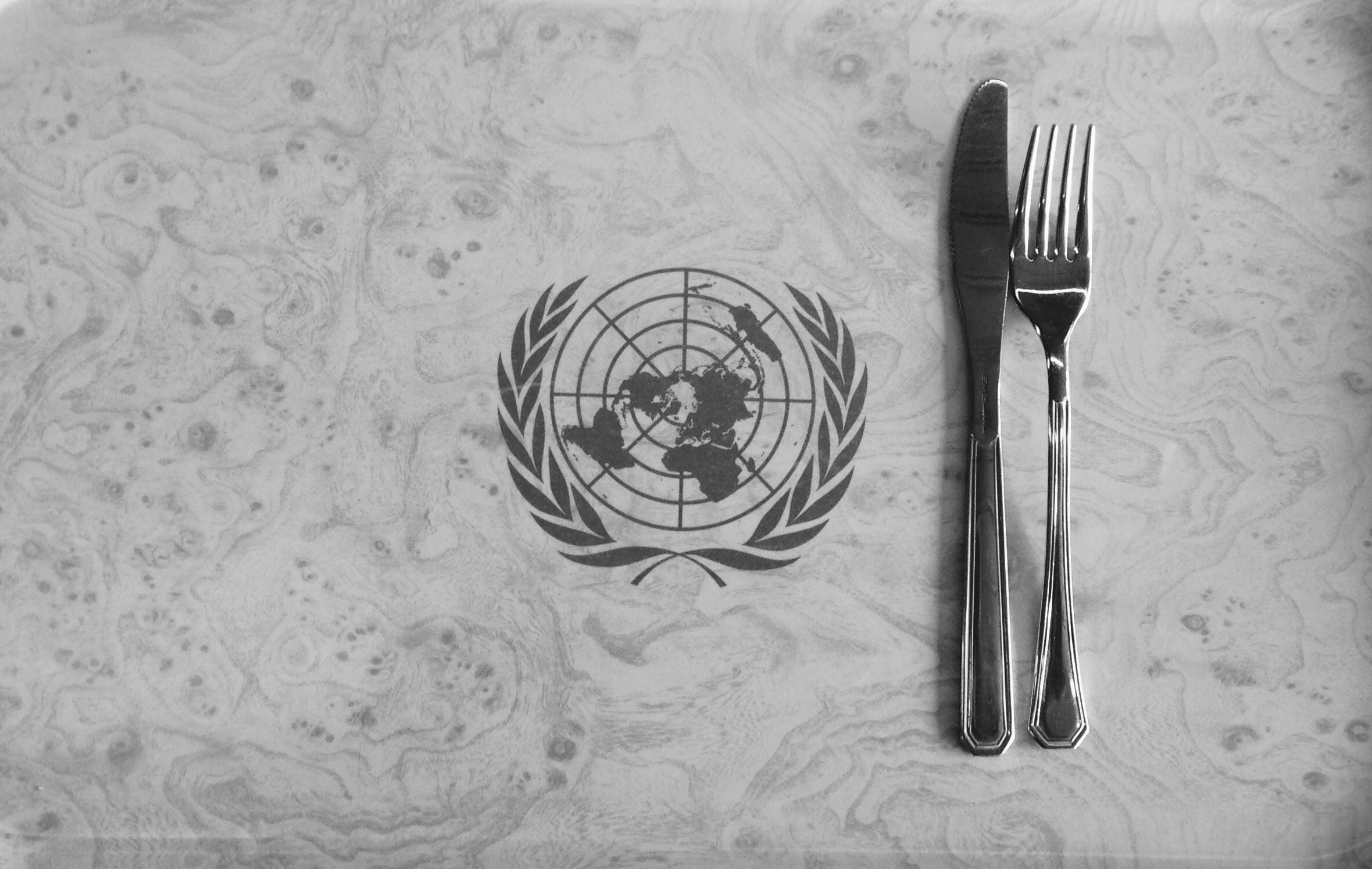 Nourish Scotland give evidence to UN CESCR