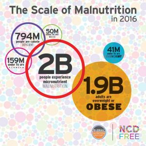 scale of malnutrition