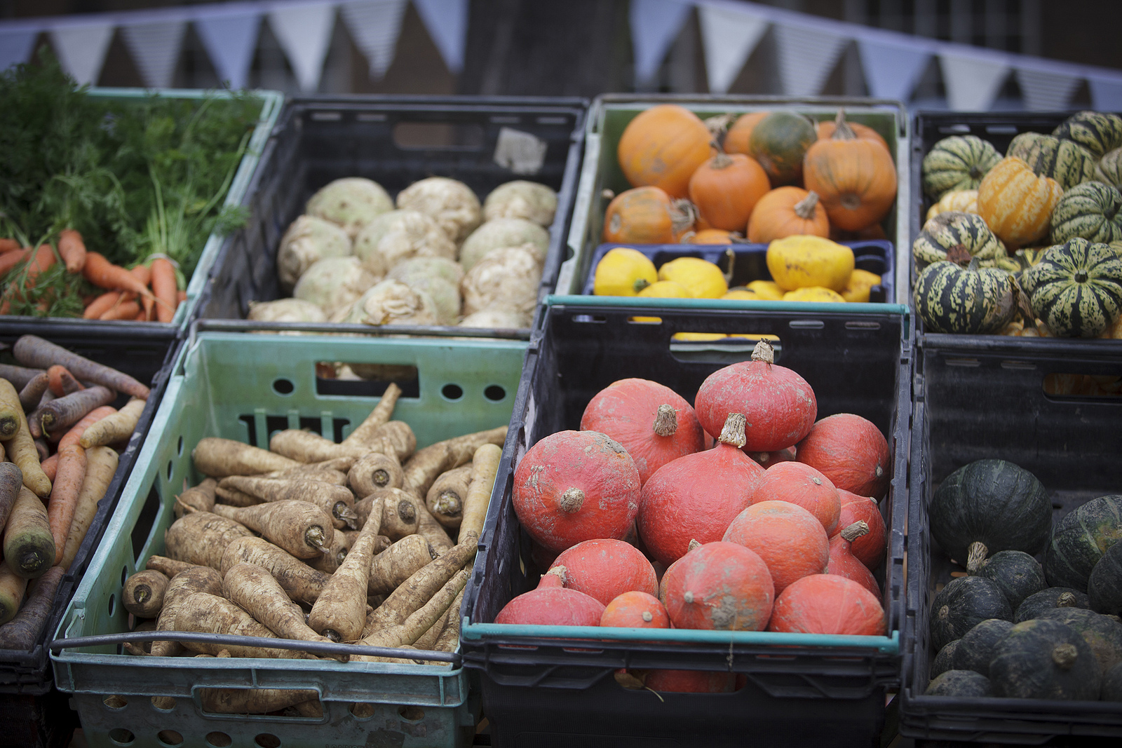 Organic Autumn Veg - CC Flickr Brockley Market