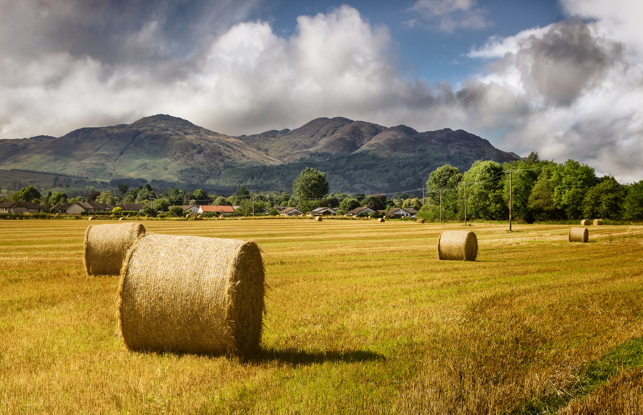 Hay harvest - Flickr CC Neil Williamson