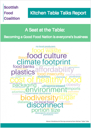 Front cover of the report