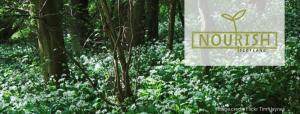 Nourish Newsletter April 2019