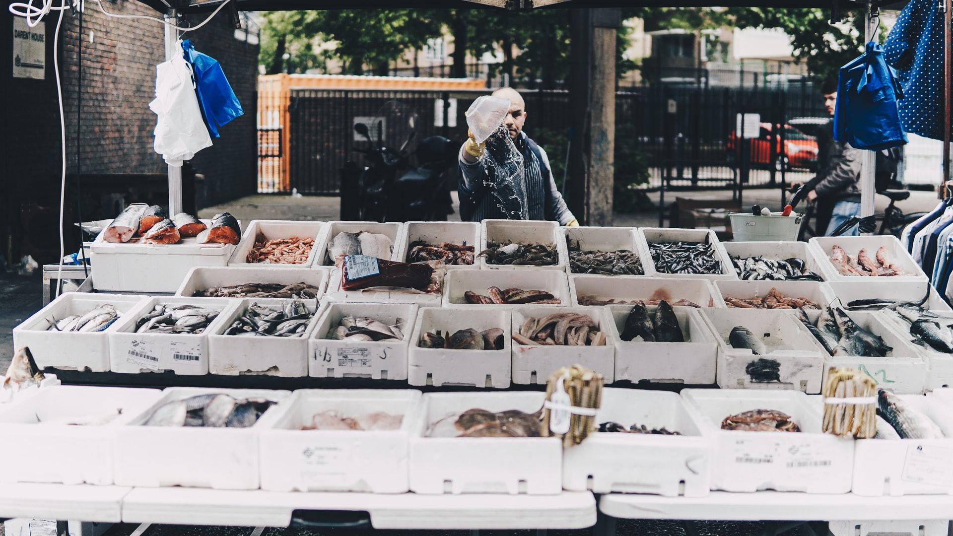 Edinburgh Fish City: A market for local fish